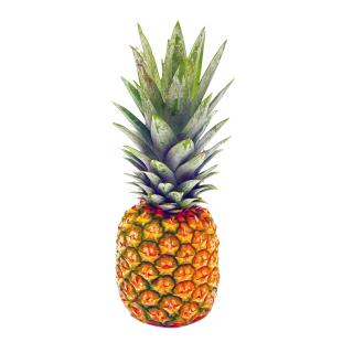 ANANAS MD 2